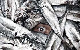 Обои глаз, рыба, Ichthyophobia