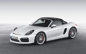 Обои Porsche, порше, Boxster, Spyder, 2015, 981, бокстер