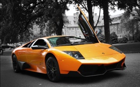 Обои Orange, cars, auto, Lamborghini Murcielago, LP670-4