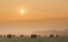 Картинка поле, пейзаж, закат, туман, сено