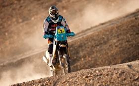 Обои Пустыня, Мотоцикл, Мото, Red Bull, Rally, Dakar, Ралли