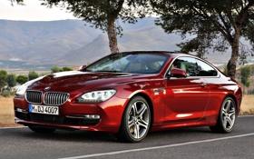 Картинка дорога, красный, Авто, BMW 6