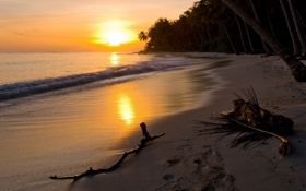Картинка закат, tropical, море, shore, sand, sunset, песок