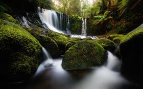 Обои природа, камни, водопад, мох, Australia, Tasmania, Horseshoe Falls