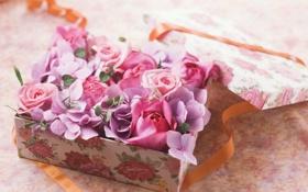 Картинка цветы, коробка, оранжевая, лента, розовые, ленточка, сиреневые