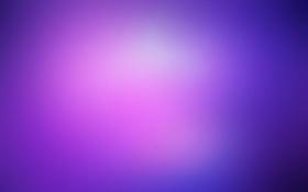 Обои фиолетовый, цвета, blueberry