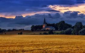 Картинка поле, пейзаж, вечер, храм