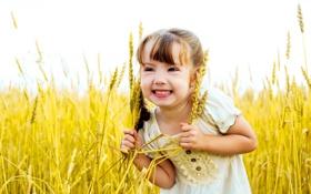 Обои колоски, поле, настроение, улыбка, девочка