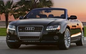 Обои закат, кабриолет, пальмы, Audi a5