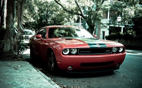 Картинка Dodge, challenger, srt8, американец, мощный