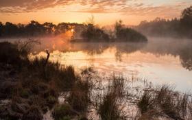 Картинка закат, пейзаж, озеро, туман