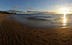 Картинка море, пляж, пейзаж, природа, побережье, Гавайи, США