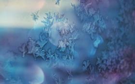 Обои зима, мечта, снежинки, синий, блики, настроение, голубой