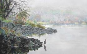 Картинка деревья, природа, озеро, камни, птица, берег, арт