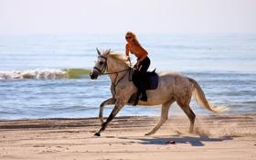 Обои девушка, конь, море