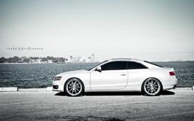 Картинка белый, Audi, ауди, white, Coupe, 360 three sixty forged, US-spec