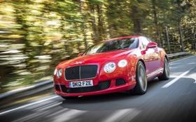Картинка Красный, Bentley, Continental, Машина, Решетка, Капот, Автомобиль