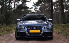 Обои дорога, лес, Audi, RS5