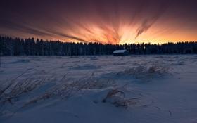 Картинка зима, поле, лес, небо, снег, закат, Fiery Sky