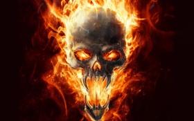 Обои огонь, арт, череп, клыки, пламя