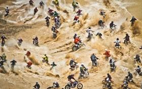 Обои люди, мотоциклы, соревнование, Red Bull Hare Scramble