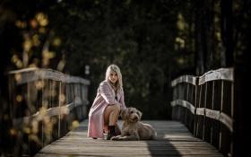 Картинка девушка, мост, собака