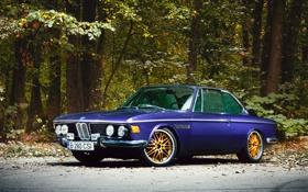 Обои природа, BMW, 1969