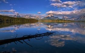 Картинка forest, sky, mountain, lake, wyoming, grand teton