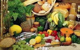 Картинка лук, огурец, редиска, банан, фасоль, ананас, фрукты