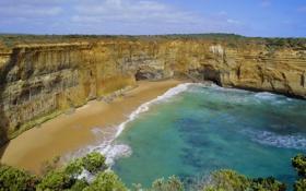 Картинка песок, море, волны, пляж, пена, деревья, пейзаж