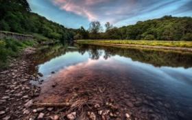 Картинка камни, река, берег, деревья, облака, лес