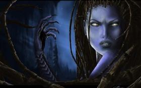 Обои рука, Девушка, когти, StarCraft 2, Керриган