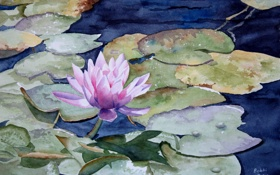 Картинка листья, озеро, лотос, акварель
