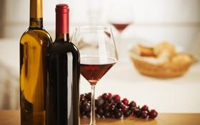 Картинка вино, красное, белое, бокал, виноград, бутылки