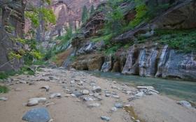 Картинка камни, река, скалы, деревья, каньон, горы, ущелье