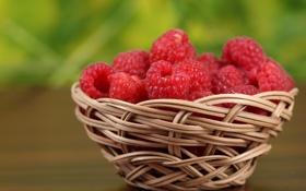 Обои ягоды, малина, корзинка, berries, basket, raspberries