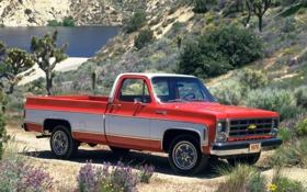 Обои Chevrolet, Шевроле, 1979, Silverado, Сильверадо, Fleetside, С20