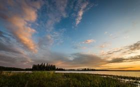 Картинка облака, деревья, Jeff Wallace