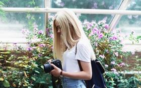 Картинка девушка, камера, фотоаппарат, блондинка, профиль