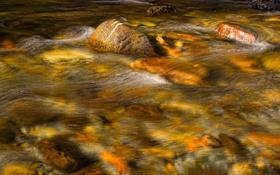 Картинка река, ручей, камни, поток