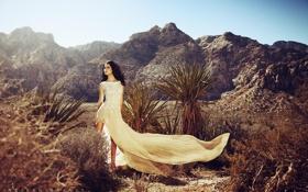 Картинка девушка, горы, пустыня, модель, кактусы, плотье