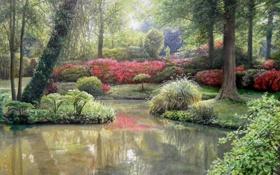 Картинка вода, деревья, пейзаж, цветы, озеро, парк, картина