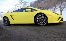 Обои Lamborghini, колеса, Gallardo, автомобиль, LP560-4
