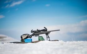 Обои оружие, оптика, винтовка, снайперская, Tikka T3