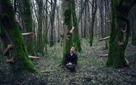 Обои парень, лес, руки