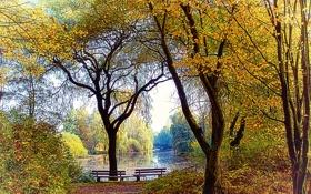 Картинка осень, озеро, парк, скамейки