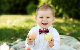 Обои мальчик, яблоки, улыбка, бабочка, ребенок, смех