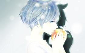 Обои девушка, яблоко, тень, аниме, штрих-код, арт, фрукт