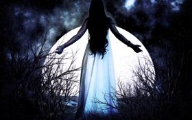 Картинка небо, девушка, звезды, ночь, луна, спина, руки