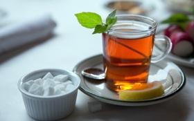 Обои лимон, чай, сахар